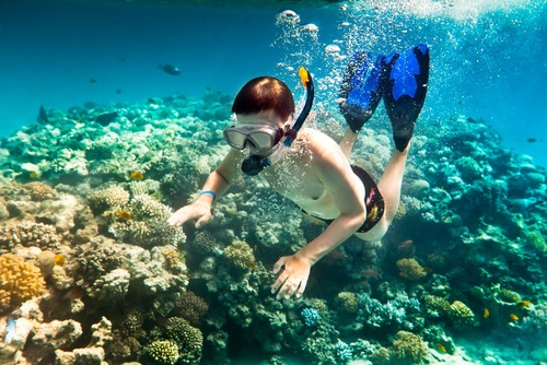 Du lịch Phú Quốc - Lặn biển ngắm san hô